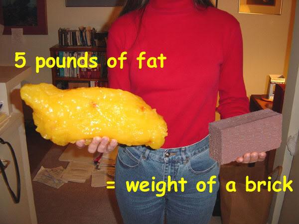 5lb-fat-brick